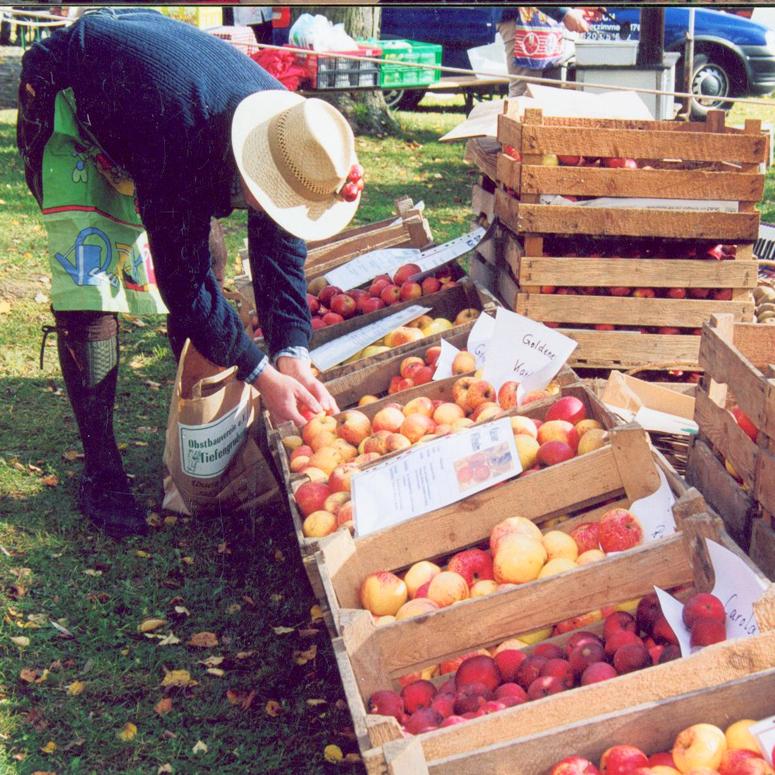 Tiefengrubener Obstmarkt