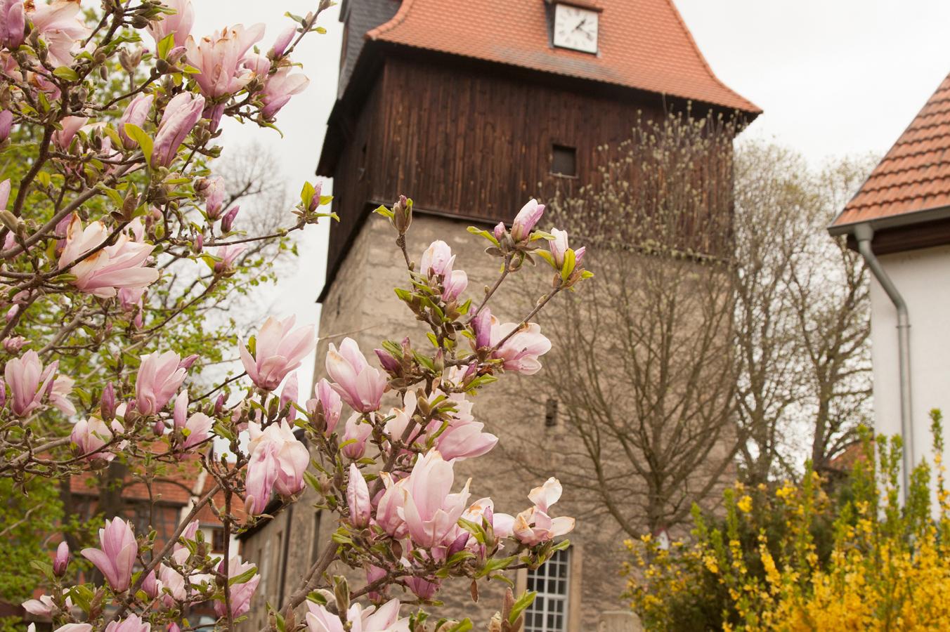 St. Nikolaus Kirche im Frühling