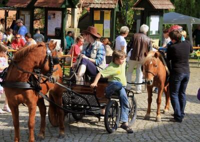 Kinderfest mit Ponys