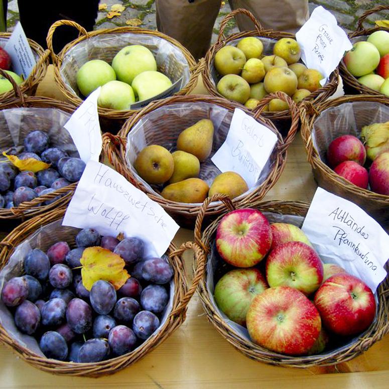 Verschiedene Obstsorten auf dem Obstmarkt