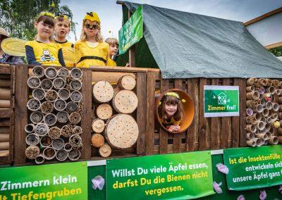 Brunnenfestumzug-2019-Bienenwagen-Tiefengruben-1