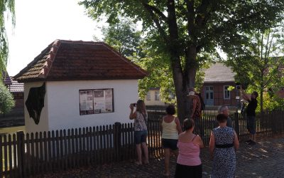 Fledermaushotel am Dorfteich eröffnet